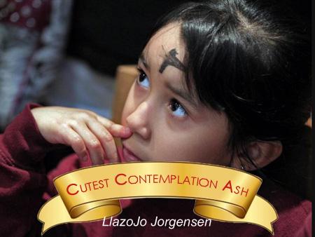 CutestContemplation
