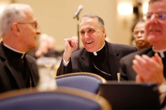 Cardinal Daniel N. DiNardo of Galveston-Houston smiles after being elected the next vice president of the U.S. Conference of Catholic Bishops. (CNS photo/Nancy Phelan Wiechec)