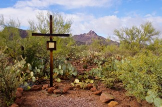 Go Into the Desert this Lent
