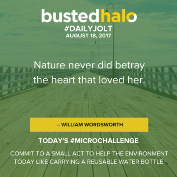 Nature never did betray the heart that loved her. -- William Wordsworth