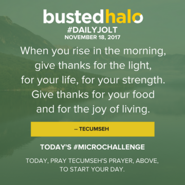 When you rise in the morning, give thanks for the light, for your life, for your strength. Give thanks for your food and for the joy of living. -- Tecumseh