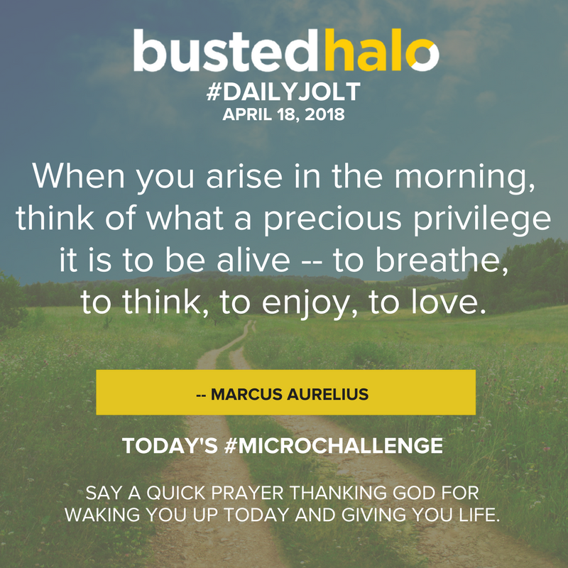 When you arise in the morning, think of what a precious privilege it is to be alive -- to breathe, to think, to enjoy, to love. -- Marcus Aurelius