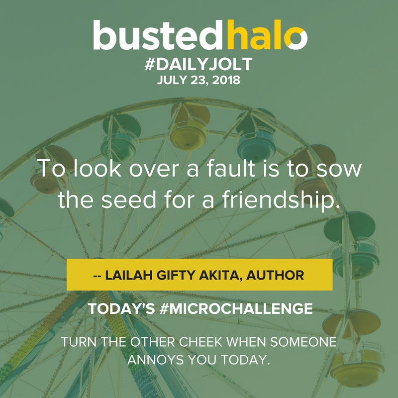 To look over a fault is to sow the seed for a friendship. -- Lailah Gifty Akita, author
