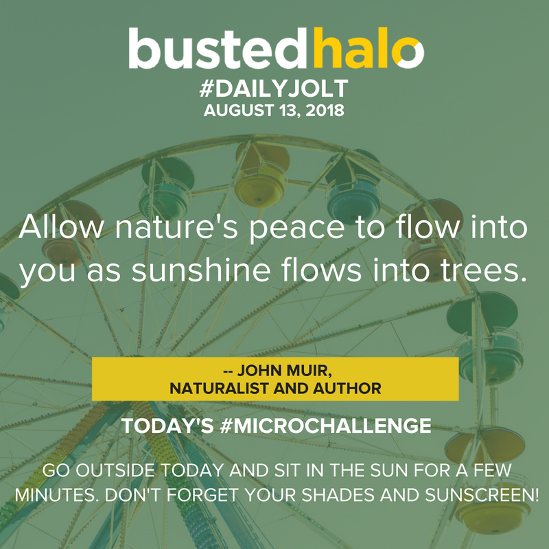 Allow nature's peace to flow into you as sunshine flows into trees. -- John Muir, naturalist and author