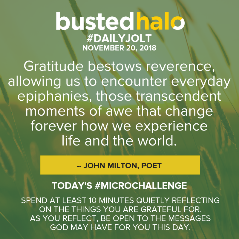 Gratitude bestows reverence, allowing us to encounter everyday epiphanies, those transcendent moments of awe that change forever how we experience life and the world. -- John Milton, poet