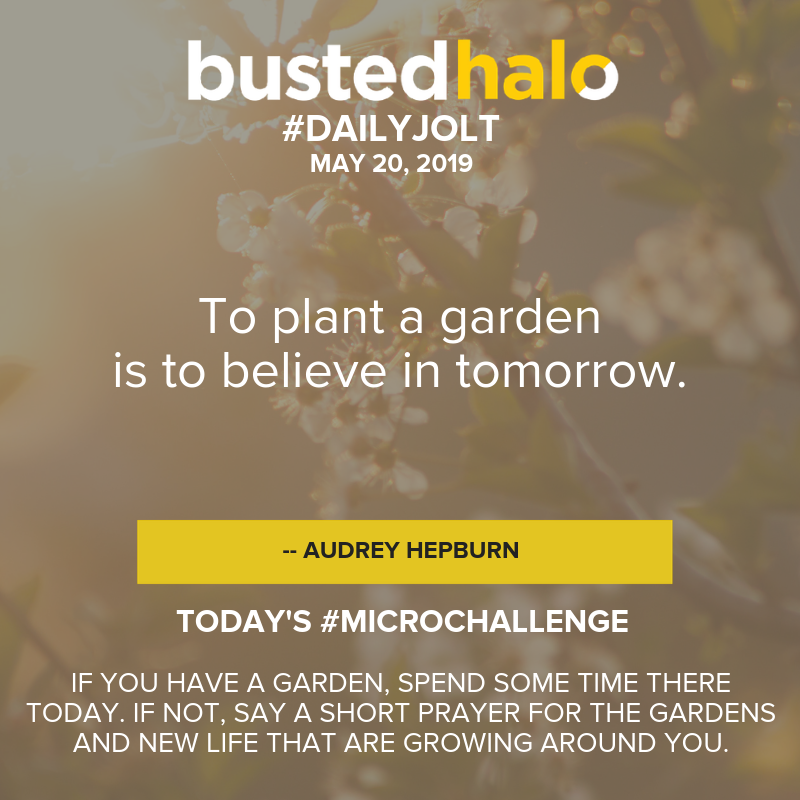 To plant a garden is to believe in tomorrow. -- Audrey Hepburn