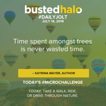 Time spent amongst trees is never wasted time. -- Katrina Mayer, author