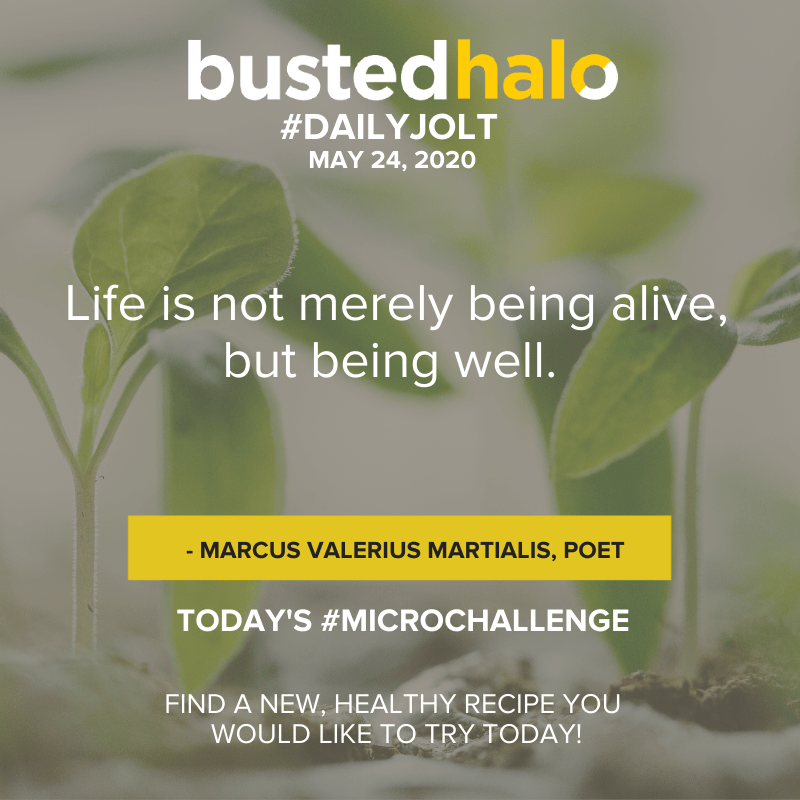 Life is not merely being alive, but being well. - Marcus Valerius Martialis, poet