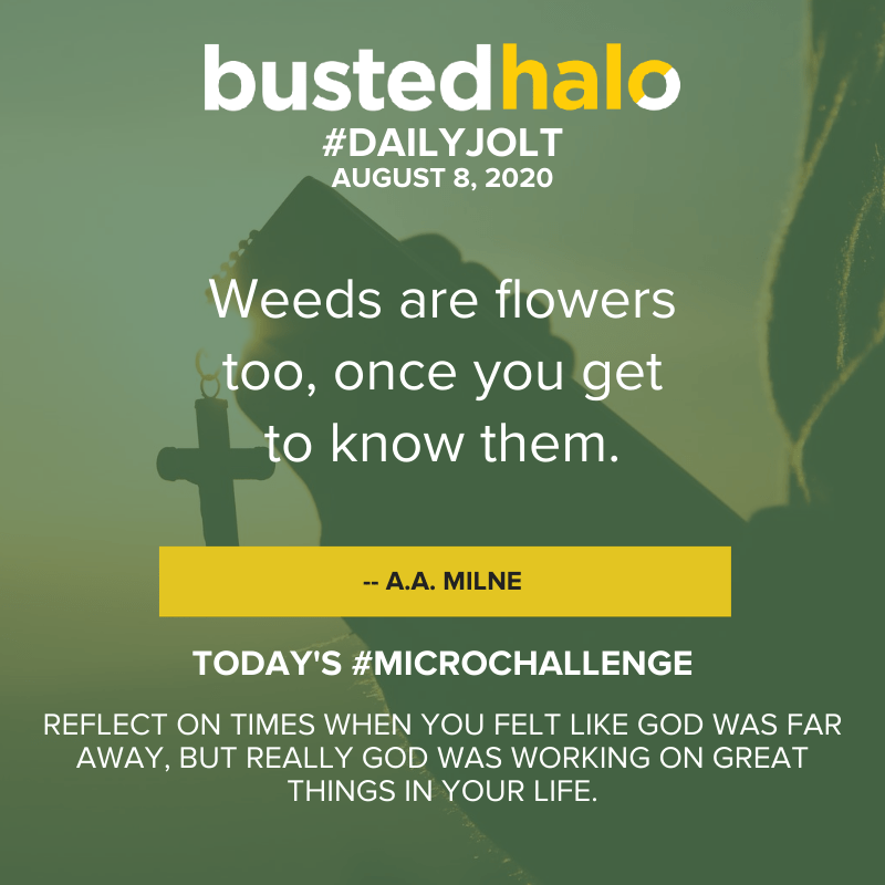 Weeds are flowers too, once you get to know them. -- A.A. Milne