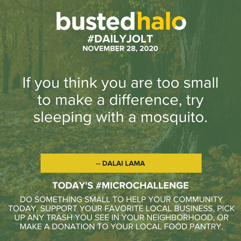 If you think you are too small to make a difference, try sleeping with a mosquito. -- Dalai Lama