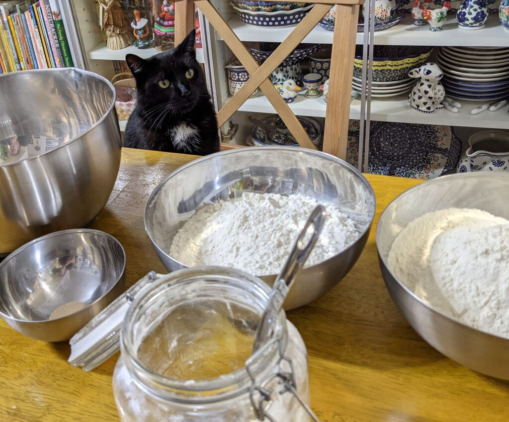 Cat looking over containers of flour